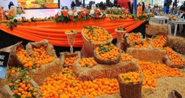 Adana Portakal Çiçeği Karnavalı